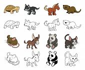 stock photo of white wolf  - A set of cartoon animal illustrations - JPG