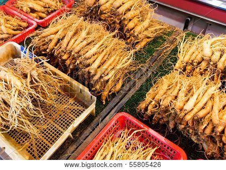Ginseng root stick