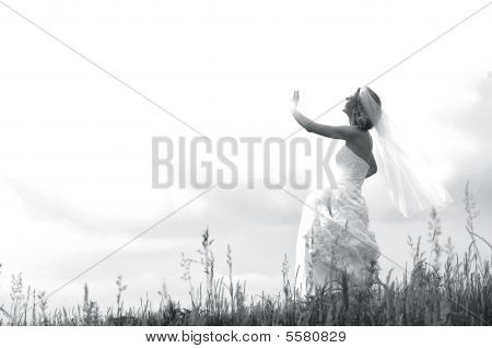 Angel Bride From Heaven