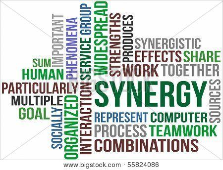 Synergy - Word Cloud