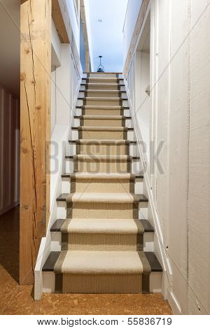 Basement Stairs In House