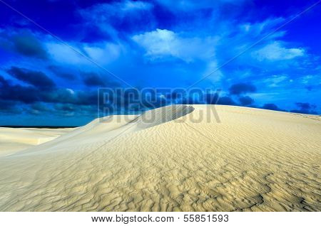 White Sand Dunes Of Nilgen Nature Reserve