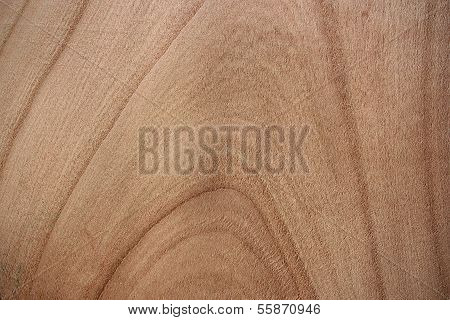 Cherry Wood Surface - Annual Rings