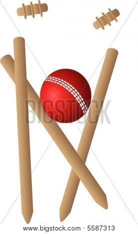 Cricket Ball