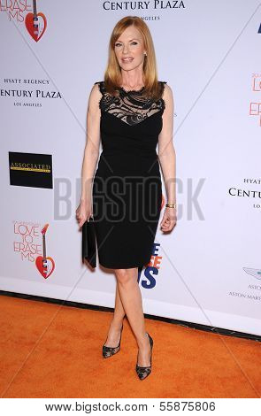LOS ANGELES - MAY 03:  Marg Helgenberger arrives to the Race To Erase MS 2013  on May 03, 2013 in Century City, CA