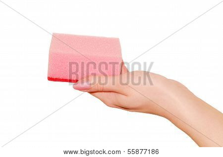 Sponge For Cleaning In Hand.