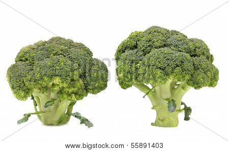 Healthy brocoli.