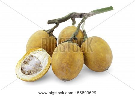 Ripe Acera Or Betel Palm Nut Fruit With Path