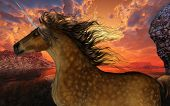 foto of buckskin  - A beautiful dappled buckskin unicorn prances with its wild mane flowing and muscles shining - JPG