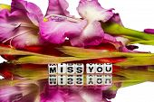 pic of miss you  - Miss you message with green and pink stem - JPG