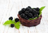 Basket  Of Blackberries