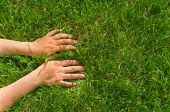 Hands In Grass