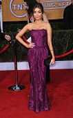 LOS ANGELES - JAN 27:  Sarah Hyland arrives to the SAG Awards 2013  on January 27, 2013 in Los Angel