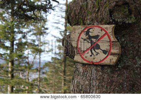 Tree sign in Norway