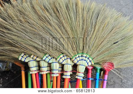 The Broom From Dry Grass