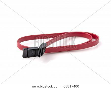 Red Cable Sata. On A White Background.