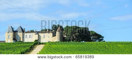 Vineyard And Chateau, Sauternes Region, Aquitaine, France