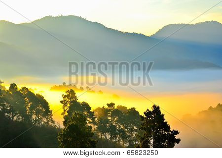 Sea Of Mist. View From High Mountain. Doi Angkhang Mountain, Chiangmai Thailand.