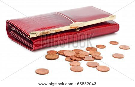 Purse With Euro Coins