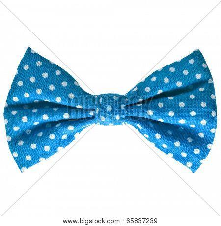 Blue bow close up on white isolated on white background