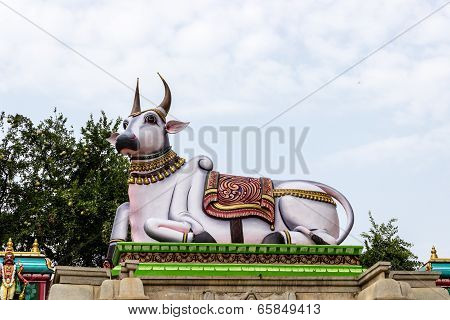 statue of sacred bull Nandi at the entrance of Hindu temple with Golden Apple or Bael tree inside it