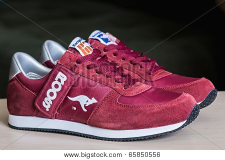 Popular Sneakers Kangaroos