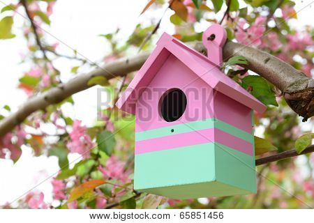 Birdhouse in garden outdoors