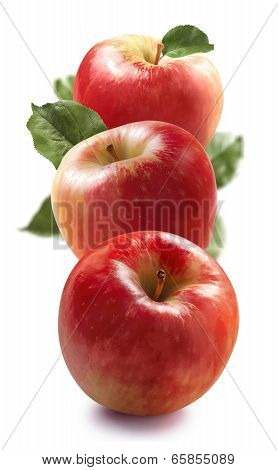 Three Red Apples Isolated On White Vertical