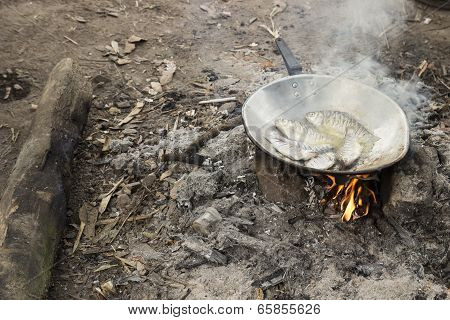 Fried Fish Cooking In Camp