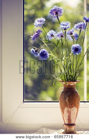 Bunch blue summery flowers in vase on window