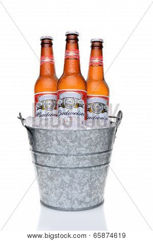 Budweiser Bottles In An Ice Bucket