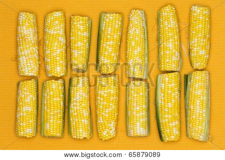 Fresh Corncobs Lined Up On A Yellow Background