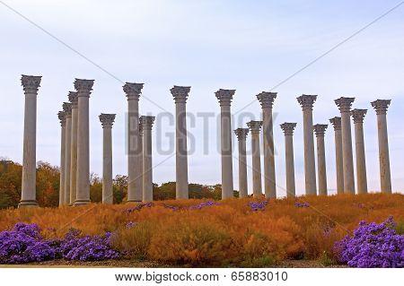 National Capitol Columns at sunset.