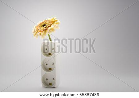 Single Yellow Gerbera Daisy In A Vase