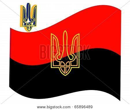 Revolutionary Flag
