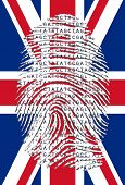 stock photo of dna fingerprinting  - Genetic Letters in fingerprint over UK Flag - JPG