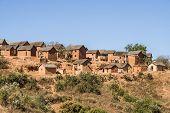 picture of zebu  - Typical village of Malagasy highlands near Ampefy Madagascar - JPG