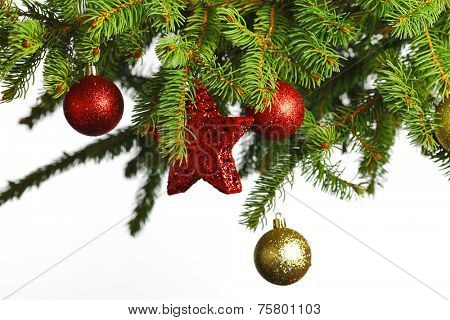 branch of Christmas tree with red and golden glass balls  isolated on white background
