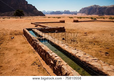 Irrigation In Wadi Rum