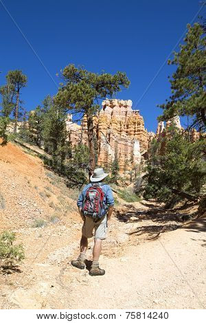 Hiker at Queens Garden trial at Bryce Canyon National Park in Utah