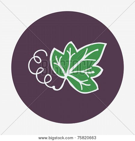 Hand-drawn grape leaf icon. Vector illustration, isolated on the background.