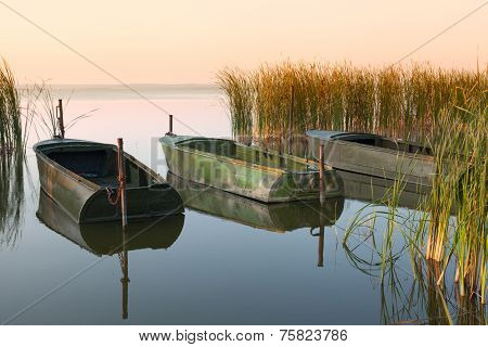 Three boats on the lake in thickets of canes at sunrise in windless weather