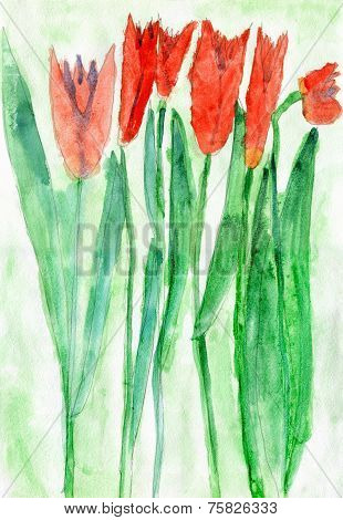 Child's Drawing Of Red Tulip Flowers, Watercolor