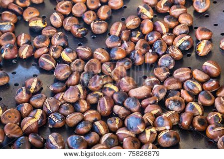 Grilling chestnuts.