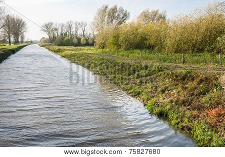 Dutch Canal In Autumn