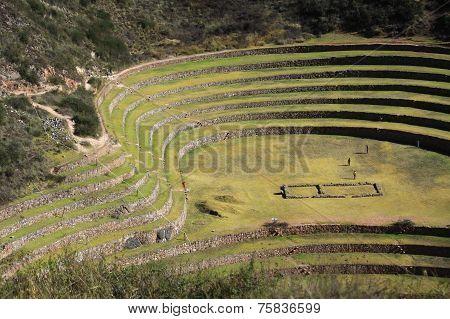 Ancient Inca circular terraces at Moray