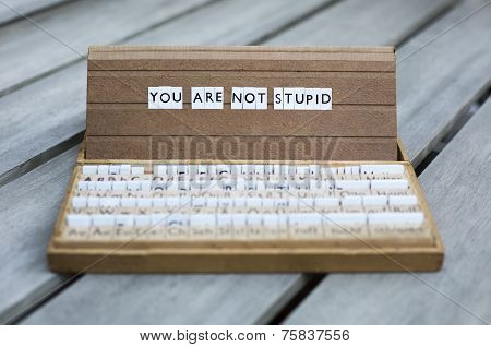You Are Not Stupid
