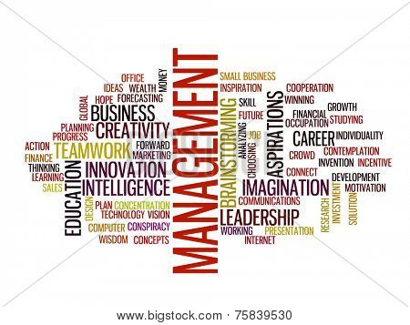 management strategy in 2015 concept word cloud