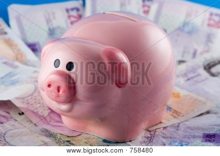 Piggy Bank and Cash