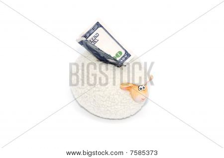 Money box with 100 US dollars